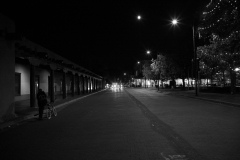 The Palace Noir